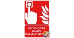 Panneau DM déclencheur manuel incendie