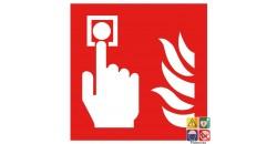 Picto point d'alarme incendie DM